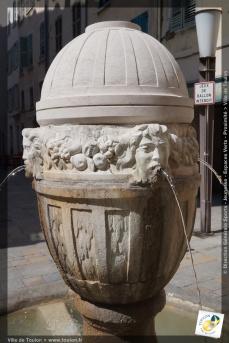 Fontaine du Vieux Palais