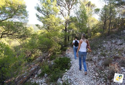 Balades nature