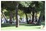 Parc des Lices